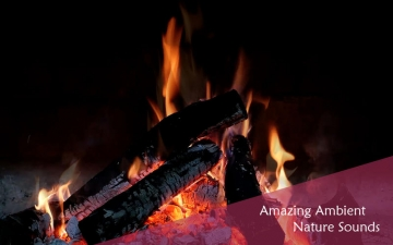 Chill & Relax Fireplace: Fire & Candle HD Video スクリーンショット3