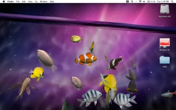 Desktop Aquarium 3D LIVE Wallpaper & ScreenSaver スクリーンショット2
