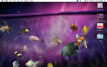 Desktop Aquarium 3D LIVE Wallpaper & ScreenSaver スクリーンショット4